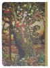 Dryad Fairy A5 Notebook Journal