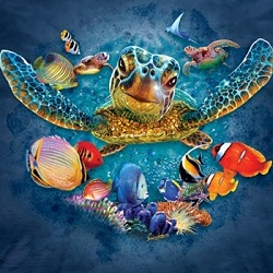 Aquatic Animal T-shirts