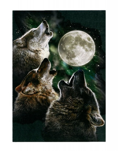 Three Wolf Moon Greeting Card