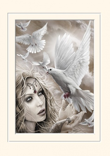 Doves of Peace Mounted Art Print 40 x 30 cm