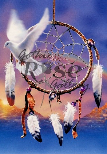 Dreamcatcher Dove Greeting Card