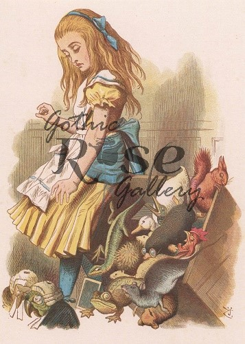 Alice upsets the Jury Box Greeting Card